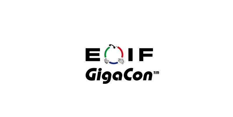 Konferencja Elektroniczny Obieg Informacji w Firmie Łódź 2017